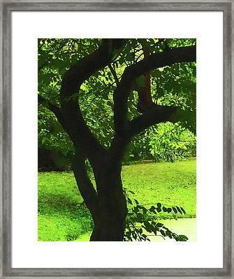 Tree Trunk Green Framed Print