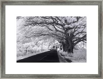 Waialua White-out Framed Print by Sean Davey