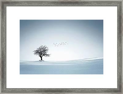 Tree Winter Framed Print