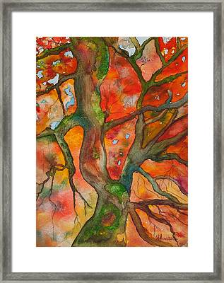 Tree With Fall Colors Framed Print by Tracey Hunnewell