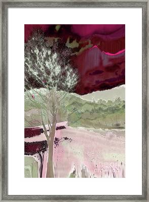 Tree Witness To Lake At Dawn Framed Print
