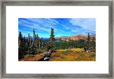 Framed Print featuring the photograph Treeline by Karen Shackles