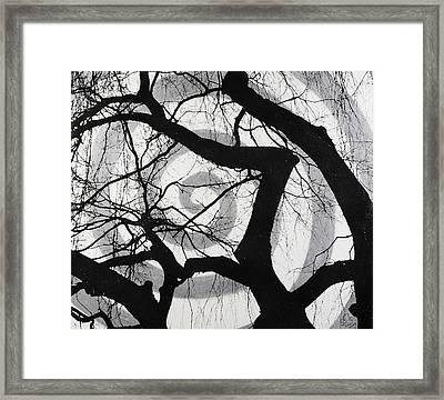 Treeman Framed Print by Arnuda