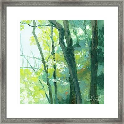 Trees 3 Framed Print
