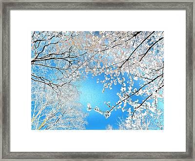 Blossoms #01 Framed Print by Ninie AG