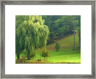 Trees Along Hill Framed Print