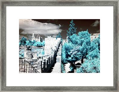 Trees Along The Ramparts Framed Print by John Rizzuto
