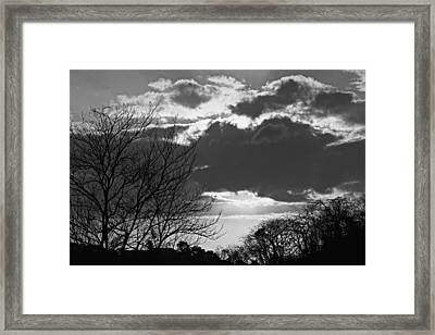 Trees And Clouds-st Lucia Framed Print