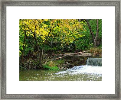 Trees And Dam Framed Print by Michael L Kimble