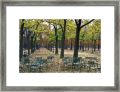 Trees And Empty Chairs In Autumn Framed Print