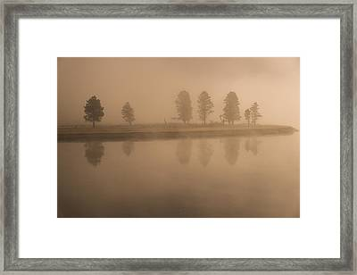 Framed Print featuring the photograph Trees And Fog by Gary Lengyel