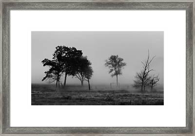 Trees And Foggy Morn Framed Print