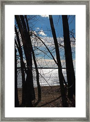 Framed Print featuring the photograph Trees And Lake Reflections by Valentino Visentini