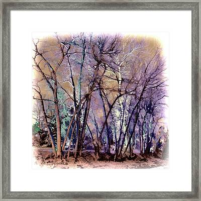 Trees Are Poems That The Earth Writes Upon The Sky Framed Print