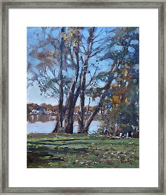 Trees By The River Framed Print