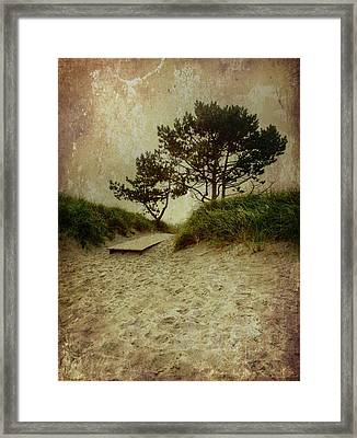 Trees By The Sea Framed Print
