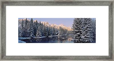 Trees Covered With Snow, Policemans Framed Print