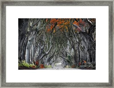 Trees Embracing Framed Print