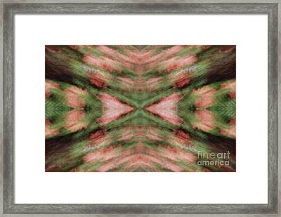 Framed Print featuring the photograph Trees From My Balcony by Patricia Youngquist