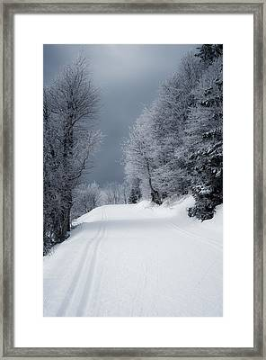 Trees Hills And Snow Framed Print