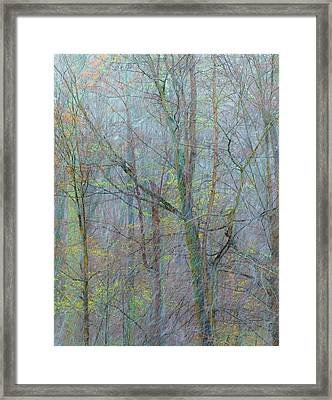 Trees In A Snowstorm Framed Print by Joseph Smith