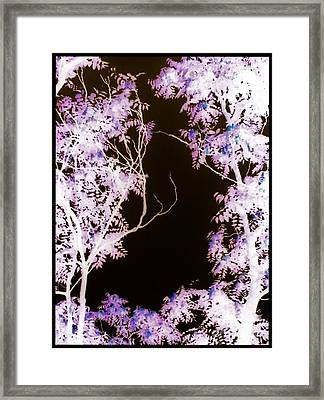 Trees In Abstract Inverted Framed Print by Debra Lynch
