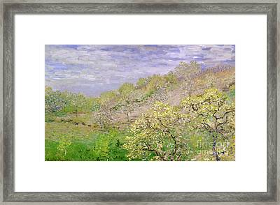 Trees In Blossom Framed Print by Claude Monet