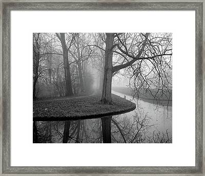 Trees In Fog Framed Print by Copyright Victor Schiferli