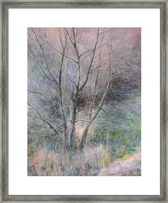 Framed Print featuring the painting Trees In Light by Harry Robertson