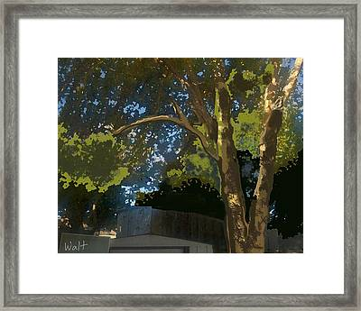 Trees In Park Framed Print