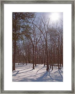 Trees In Snow Framed Print by Paul  Trunk
