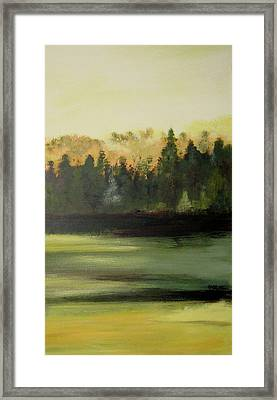 Trees In The Mist Framed Print by Marcia Crispino