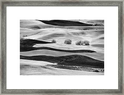 Trees In The Valley Framed Print by Jon Glaser