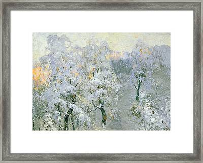 Trees In Wintry Silver Framed Print