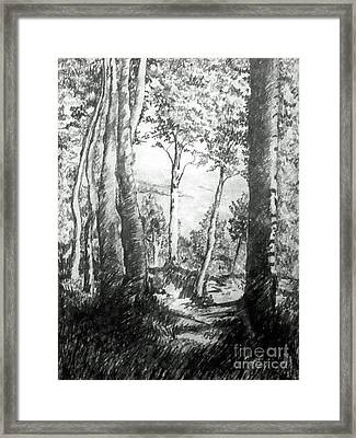 Trees Near The Lake Framed Print by Carolyn Alston Thomas