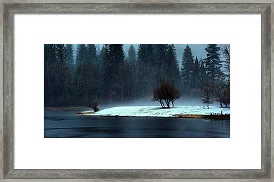 Trees On Point Framed Print