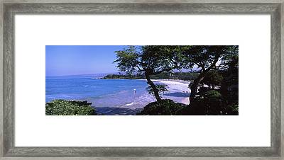 Trees On The Beach, Mauna Kea, Hawaii Framed Print by Panoramic Images