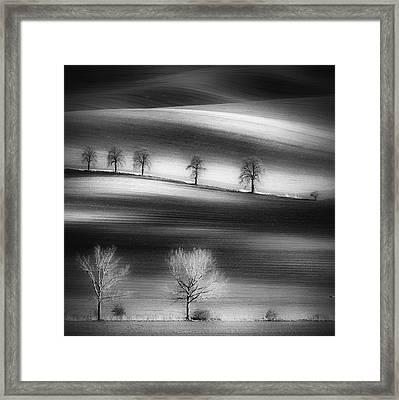 Trees Framed Print by Piotr Krol (bax)