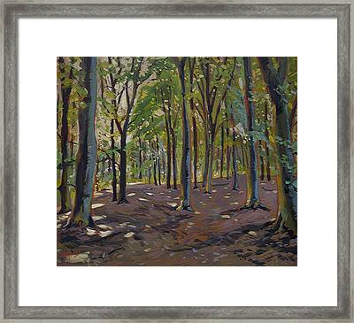 Trees Reeshofbos Framed Print