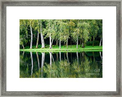 Trees Reflected In Water Framed Print by Colin Rayner