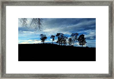 Trees Framed Print by RKAB Works