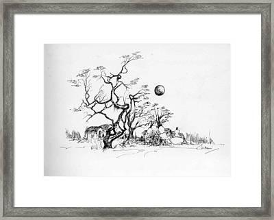 Trees Rocks And A Ball Framed Print by Padamvir Singh
