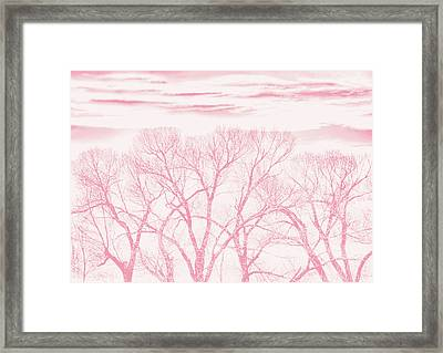 Framed Print featuring the photograph Trees Silhouette Pink by Jennie Marie Schell