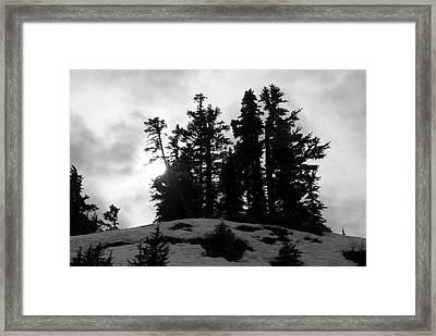 Framed Print featuring the photograph Trees Silhouettes by Yulia Kazansky