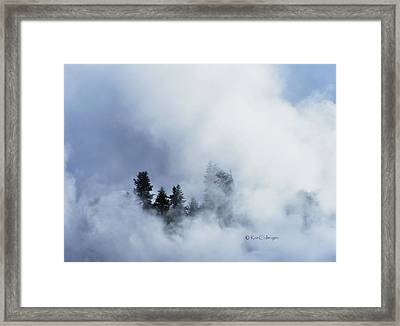 Trees Through Firehole River Mist Framed Print by Kae Cheatham
