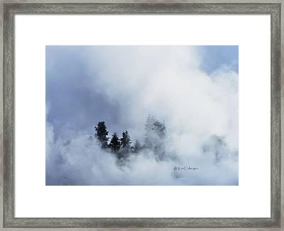 Trees Through Firehole River Mist Framed Print