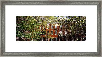 Trees With Buildings In The Background Framed Print