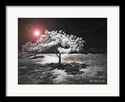 Infrared Mixed Media Framed Prints
