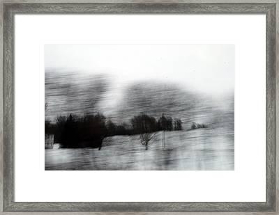 Treescape 2 Framed Print by David Hickey