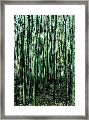 Treez Green Framed Print
